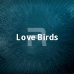 Love Birds songs