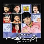 Dil Hai Shafi songs