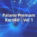 Palanu Premam Karoke - Vol 1 songs