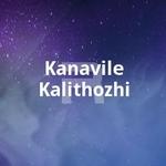 Kanavile Kalithozhi songs