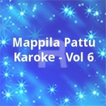 Mappila Pattu Karoke - Vol 6 songs