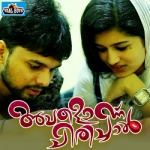 Avalonnu Chirichaal songs