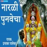 Narlicha Punavecha San songs