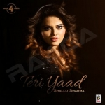 Teri Yaad songs