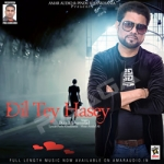 Dil Tey Hasey songs