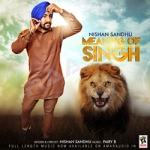 Meaning Of Singh songs