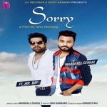 Sorry songs