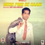 Mere Pind De Haani songs
