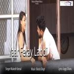Yaar Feray Labdi songs