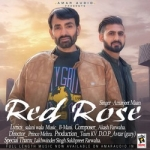 Red Rose songs