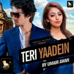 Teri Yaadeinn songs