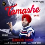 Tamashe songs