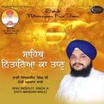 Sahib Nitaneyaan Ka Taan songs