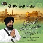 Gopal Tera Aarta songs
