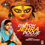 Dil Ton Jehrha Pooje songs