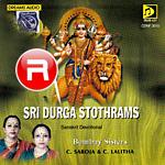 Sri Durga Stothram
