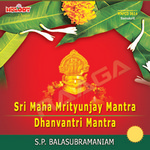Sri Maha Mritunjay Mantra And Dhanvantri Mantra