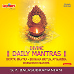 Divine Daily Mantras - Vol 1