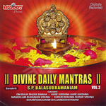 Divine Daily Mantras - Vol 2