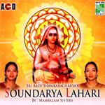 Sri Aadi Shankaracharyas Soundraya Lahari songs