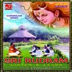 Sri Rudram - Listen And Learn - Sri Brahmasri Sankara Sasthri songs