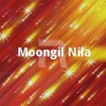 Moongil Nila songs