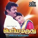 Periya Maruthu songs