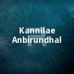 Kannilae Anbirundhal songs