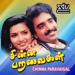 Chinna Paravaigal songs
