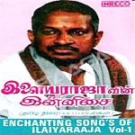 Enchanting Songs Of Ilaiyaraaja - Vol 1 songs