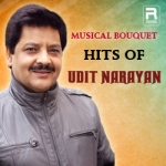 Musical Bouquet - Hits Of Udit Narayan songs
