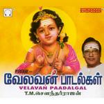 Velavan Paadalgal songs