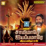 Saamimare Ayyapamare songs