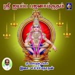 Aiyappa Bhajanamrutham - Vol 2 songs