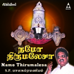 Namo Thirumalesa songs