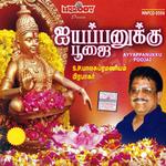 Ayyappanukku Poojai
