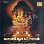 Ganapathy Pooja Vidhanam songs