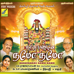 Narayanane Namo Namo songs