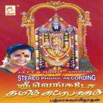 Venkatesa Tamil Subrabatham songs