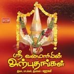Sri Vana Maariyin Arputhangal songs