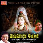 Viswanatha Potri songs