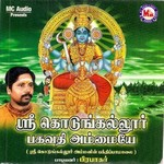 Sree Kodungallur Bhagavathy Ammaye songs