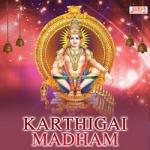 Karthigai Madham songs