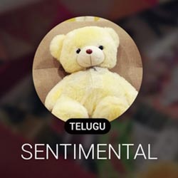 Telugu Sentimental Radio